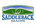 Saddleback